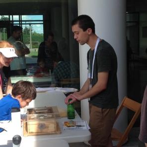 Matt showing kids bumblebees