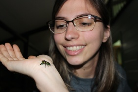 Andreia and orchid bee