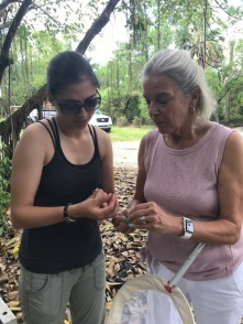 Andreia teaching Aimee's mom about bees